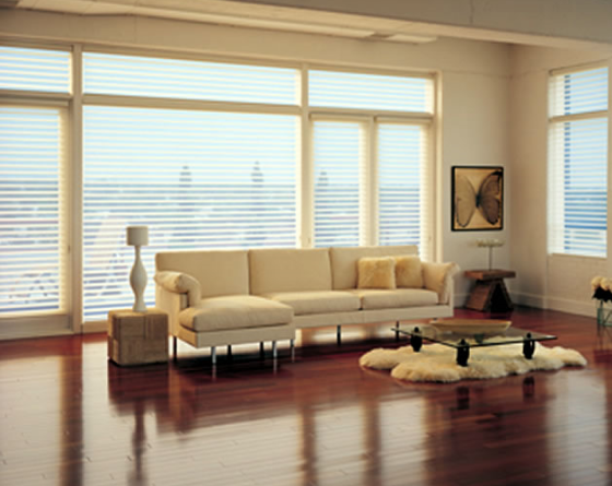 Motorized Blinds Shades