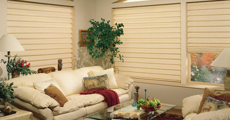 blinds 10