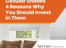 Cellular Shades 4 Reasons Why You Should Invest in Them